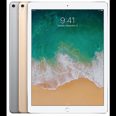 iPad Pro  2세대 12.9형 WiFi + Cellular 모델 256GB 실버_No.146